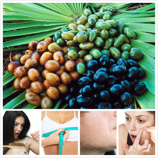 Using Saw Palmetto on Women: Benefits and Side Effects