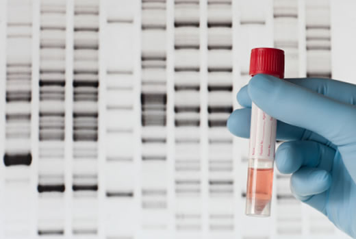 DNA Test While Pregnant